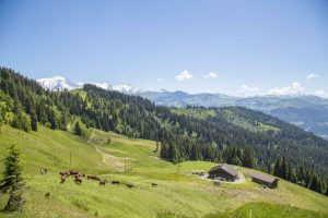 Refuge du Plan de l'Are sur le GR Tour du Pays du Mont-Blanc